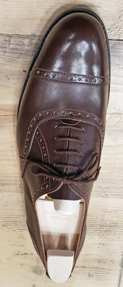 Oxford - brogue straight toecap - bird's eye